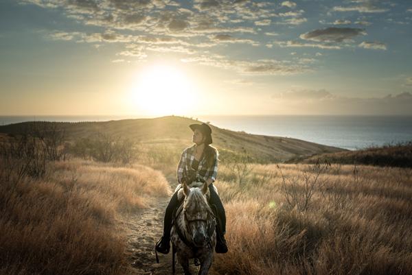balade a cheval - coucher de soleil dans la savane reunionnaise.jpg